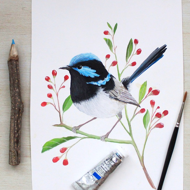Blue wren painting by Deanna Maree