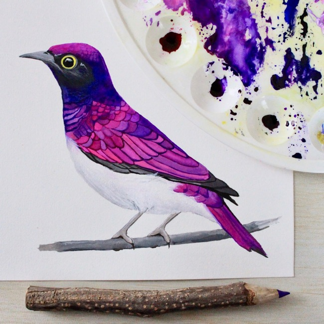 Pretty gouache & watercolour bird by Deanna Maree