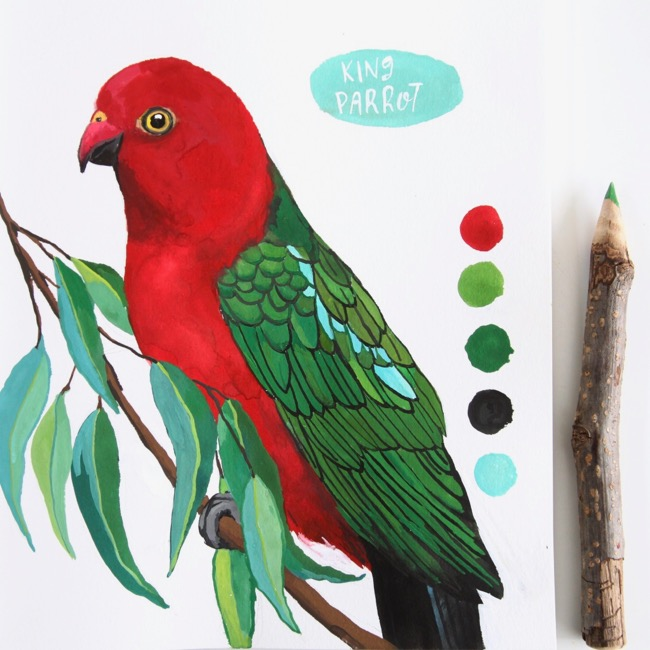 King parrot artwork, gouache illustration by Deanna Maree