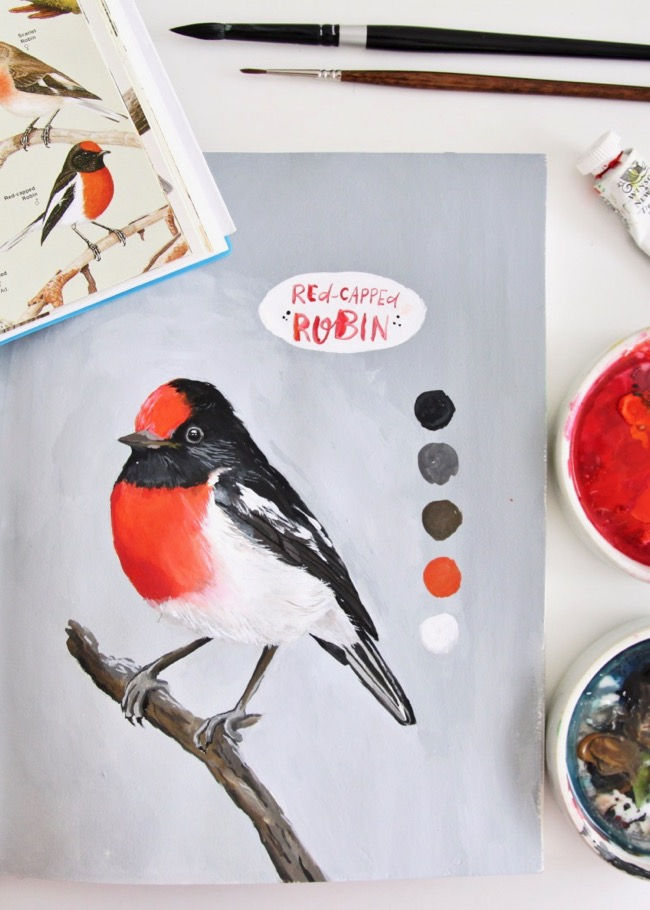 Red-capped robin gouache painting by Deanna Maree