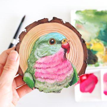 22) Princess Parrot