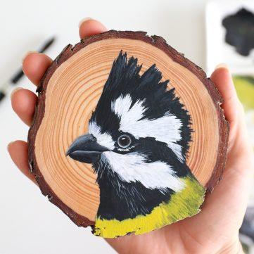 29) Crested Shrike-tit