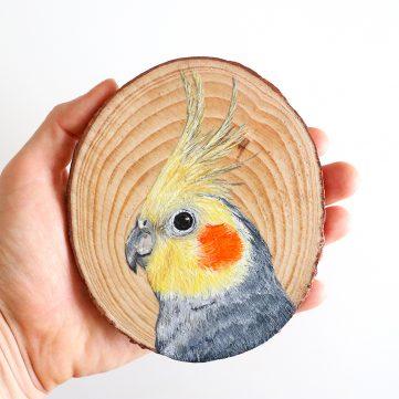 4) Cockatiel