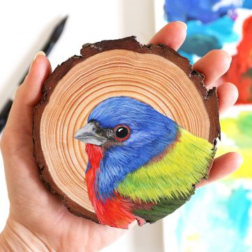42) Painted Bunting