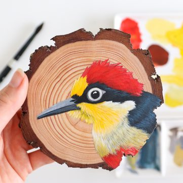 43) Yellow-fronted Woodpecker