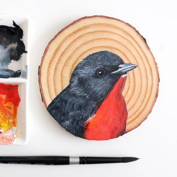5) Mistletoebird