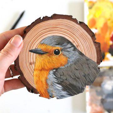 56) European Robin