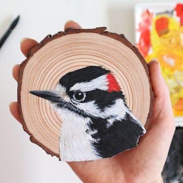 62) Downy Woodpecker