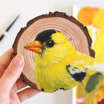 64) American Goldfinch