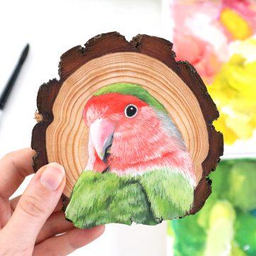 69) Rosy-faced Lovebird