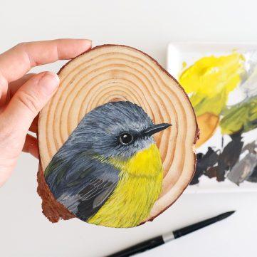 7) Eastern Yellow Robin