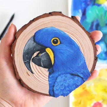 73) Hyacinth Macaw