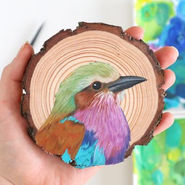 75) Lilac-breasted Roller