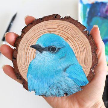 78) Mountain Bluebird
