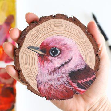 89) Pink-headed Warbler