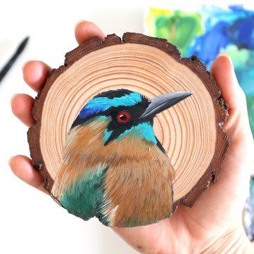 95) Turquoise-browed Motmot